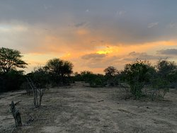 World class all-inclusive in the African bush!