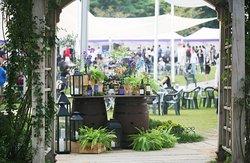 Dionysos Wine Fair