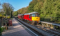 """Newly painted """"Eastleigh"""" Class 33 No. 33021 arrives into Consall station on the last trip of the day during Anything Goes.  At Consall Station there are plenty of walks and nature reserves for to explore thought the year. Why not take a look when you next visit."""