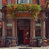Stag's Head Dublin