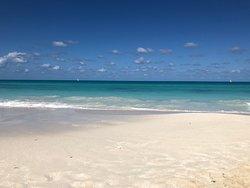 Perfect 1-week vacation to Ocean Casa Del Mar