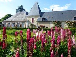 Dans le jardin bouquetier, fleurissent tout au long de l'année fleurs et légumes dans une harmonie de couleurs.  ©️C. de Vibraye