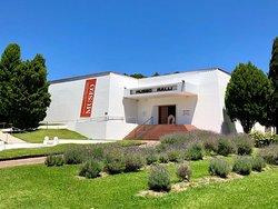 拉里博物馆