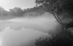 Photograph in BW of the White River with early morning fog along Parker Bottoms near Beaver Dam. The gallery has framed and matted prints in various sizes.