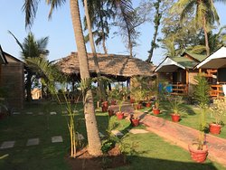 One of the best resorts in Agonda