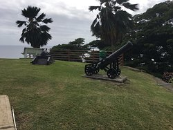 Fort King George canons on lawn