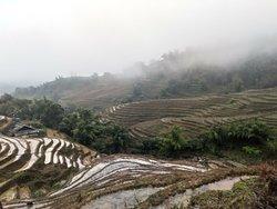 Hmong homestay trekking 2days - 1 night.