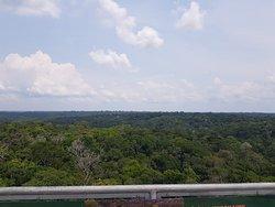 Vista do topo da Torre