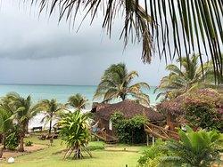 Windy paradise!