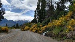 Camino a Puerto Chucao