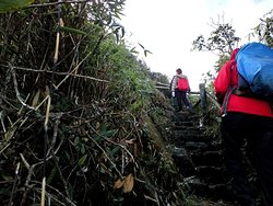 """Fansipan mountain trekking..... It is  """"Conque roof of Indochina""""."""