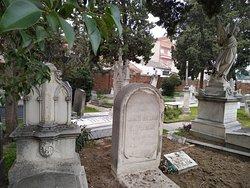 Cementerio Britanico