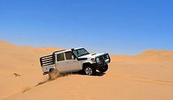 Dolphin Tours Namibia Eco Friendly Desert Tours