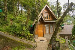 Beautifully designed cottages made from Darjeeling pine.