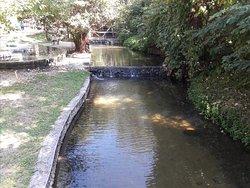 Tha Pai Hot Spring