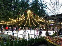 Butchart Gardens  ice skating rink