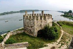 Smederevo Fortress