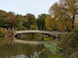 one of the famous bridges