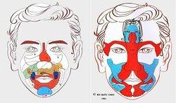 Mappe della Riflessologia Facciale