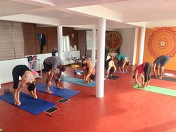 Astanga Primary Series Led-Class at Yogadarshan, January 2019