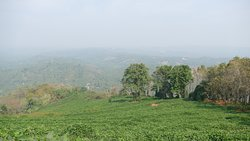 Another view of Mini Ooty