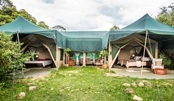 Family tent - Losokwan Camp