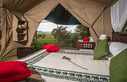 Double bed, Family tent - Losokwan Camp