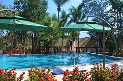 Palm Tree Health Spa