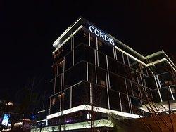 Cordis