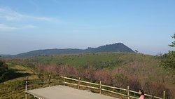 Phoo Lom Lo Mountain