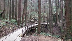 Tefuye Trail