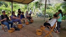 Shore Excursion to Dícover Hoi An Countryside - Hoi An Reliable  Tour Operator