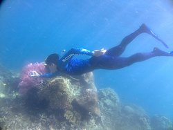 one of wonderfull snorkeling i ever had