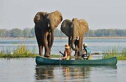 canoing safari