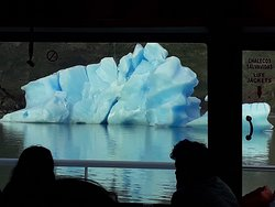 No caminho até o Glacial Gray, passamos por vários iceberg....