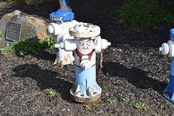 Fire Hydrant Plug Preserve