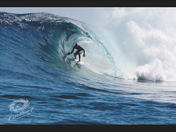 Fijian Surf Company