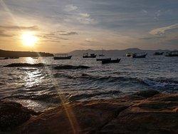 Araca Beach