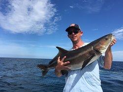 Cobia - Deep Sea Reef Fishing