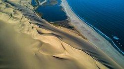 Desert Tracks Bookings & Safaris