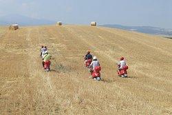 Pastrimotors-Vacanze Toscane Noleggio Vespa, Bici e E-Bike