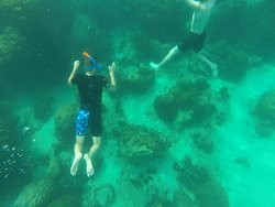 Snorkeling - the water is clear