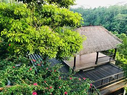 the top one among all other hotels in ubud