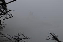 Mist amidst the mountain
