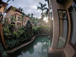 Amazing, stunning landscaping, absolutely beautiful grounds and rooms.