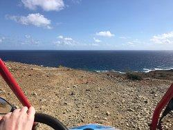 HS Rentals Aruba