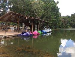 Lago onde há os pedalinhos
