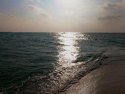 Stranded at Sea