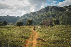 The Vinales Experience, Cuba