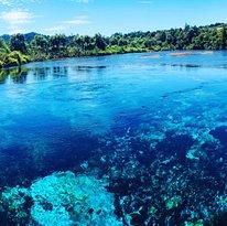 Te Waikoropupu Springs (Pupu Springs)